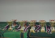 Mistrovství České republiky pro rok 2020 v sólových kategoriích